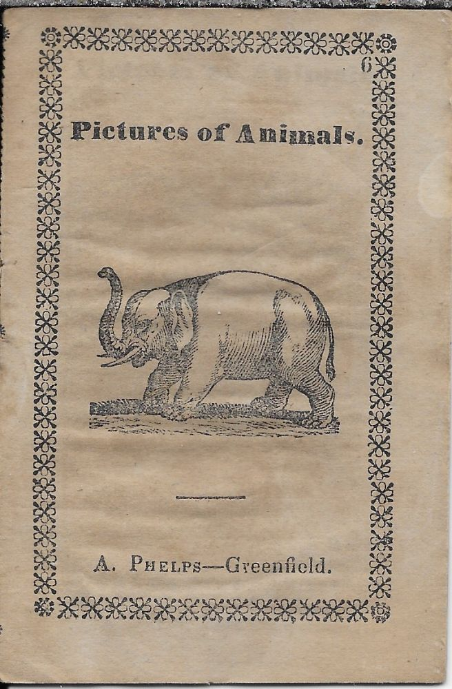 Pictures of Animals